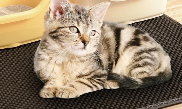 1 ou 2 tapis recuperateur de litiere pour chat