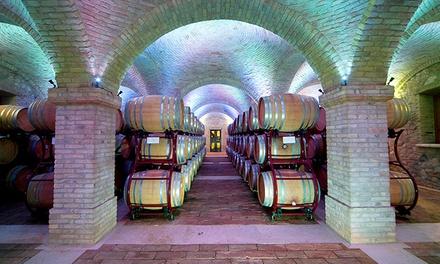 Borgo la Caccia   Degustazione di vini con salumi, formaggi e dessert