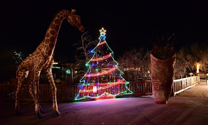 Zoo Montana Christmas Lights