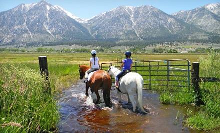 Sheridan Creek Equestrian Center In Gardnerville Nv