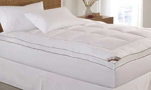 "image for Kathy Ireland 2"" Thick Cotton Fiber Mattress Topper"