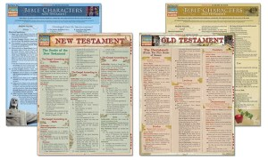 Learn the Bible Laminated StudyGuide Bundle (4Piece