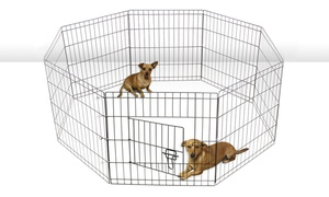image for Wire Metal Paneled Pet Playpen