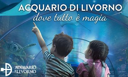 Acquario di Livorno   Ingresso per una persona (sconto 36%)