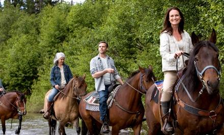 Passeggiata a cavallo per 2 o 4 persone vicino alla riserva di Capo Gallo (sconto fino a 77%)