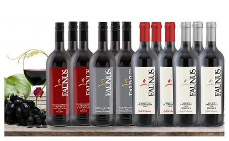12 Bottles of Fine Italian Premium Wine