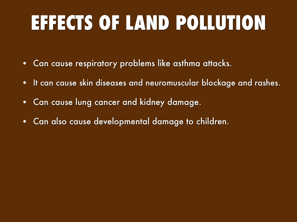 Land Pollution By Janelle Down