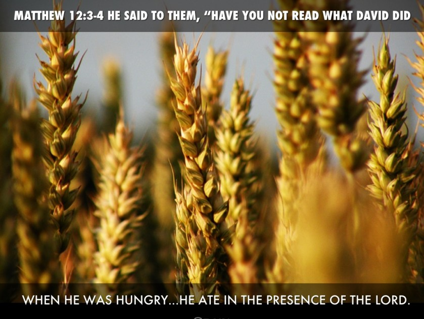 Image result for matthew 12:3