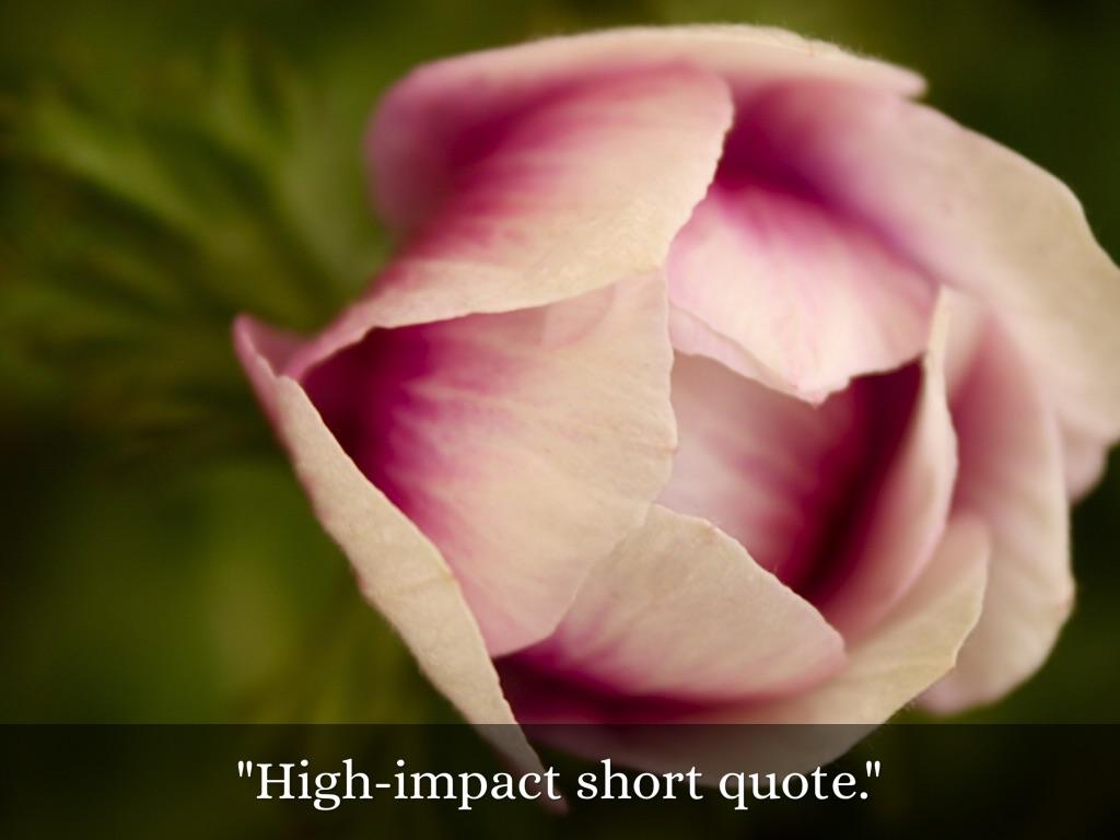 Copiar De Inspirational Quotes Presentation Template