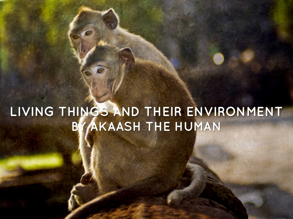 Akaash Living Things And Their Environment By Mrs