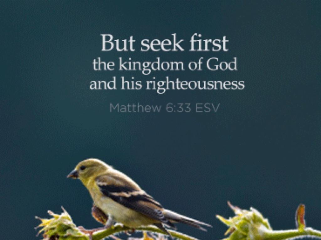Matthew 6 25 34 By Aa