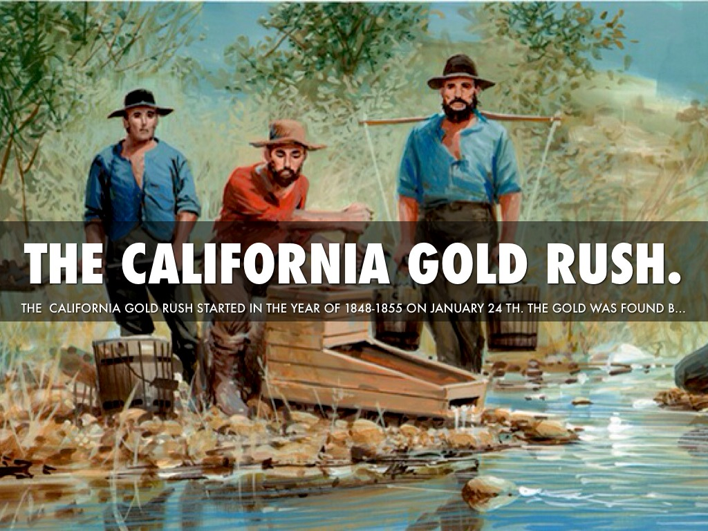 The California Gold Rush By Isabzawa