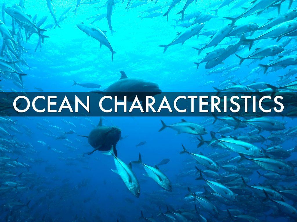 Ocean Biome By Leakdanielle