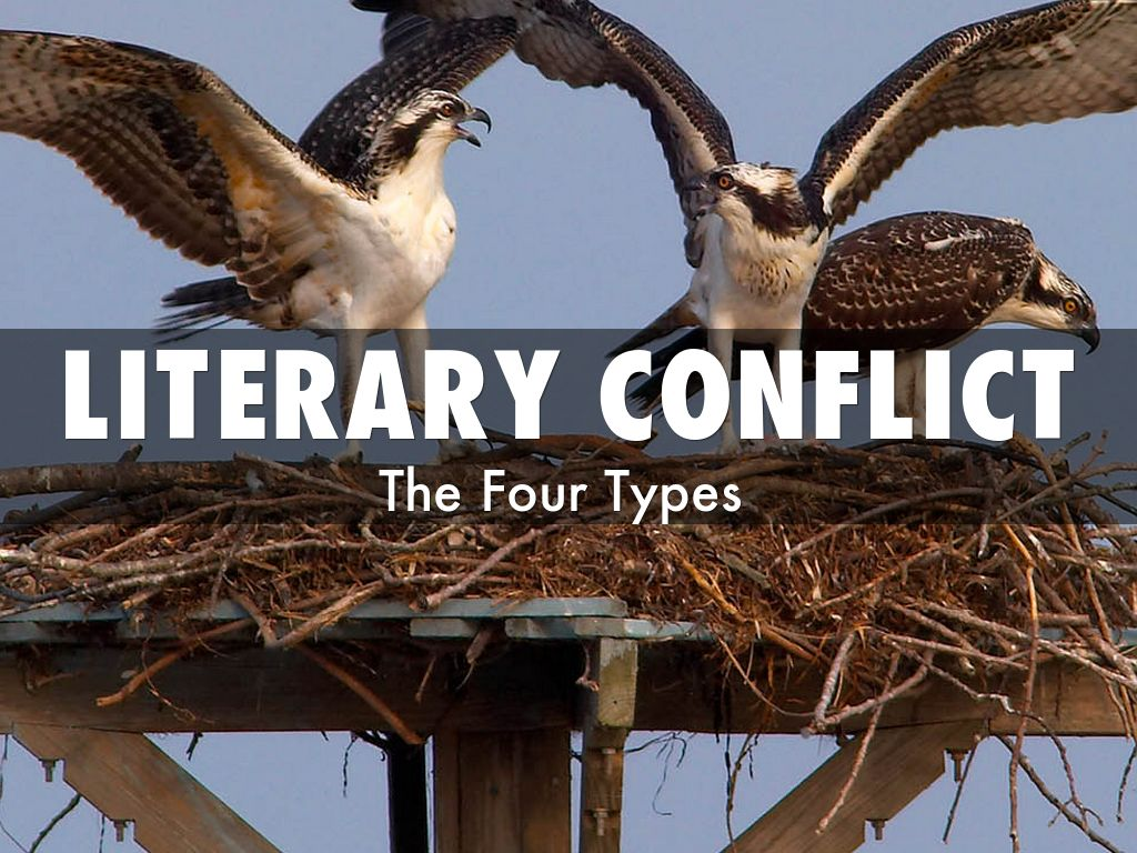 Copy Of Four Types Of Literary Conflict By Srosesilva