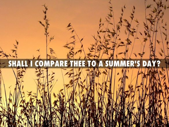 """Shall I compare thee to a summer's day?""的图片搜索结果"