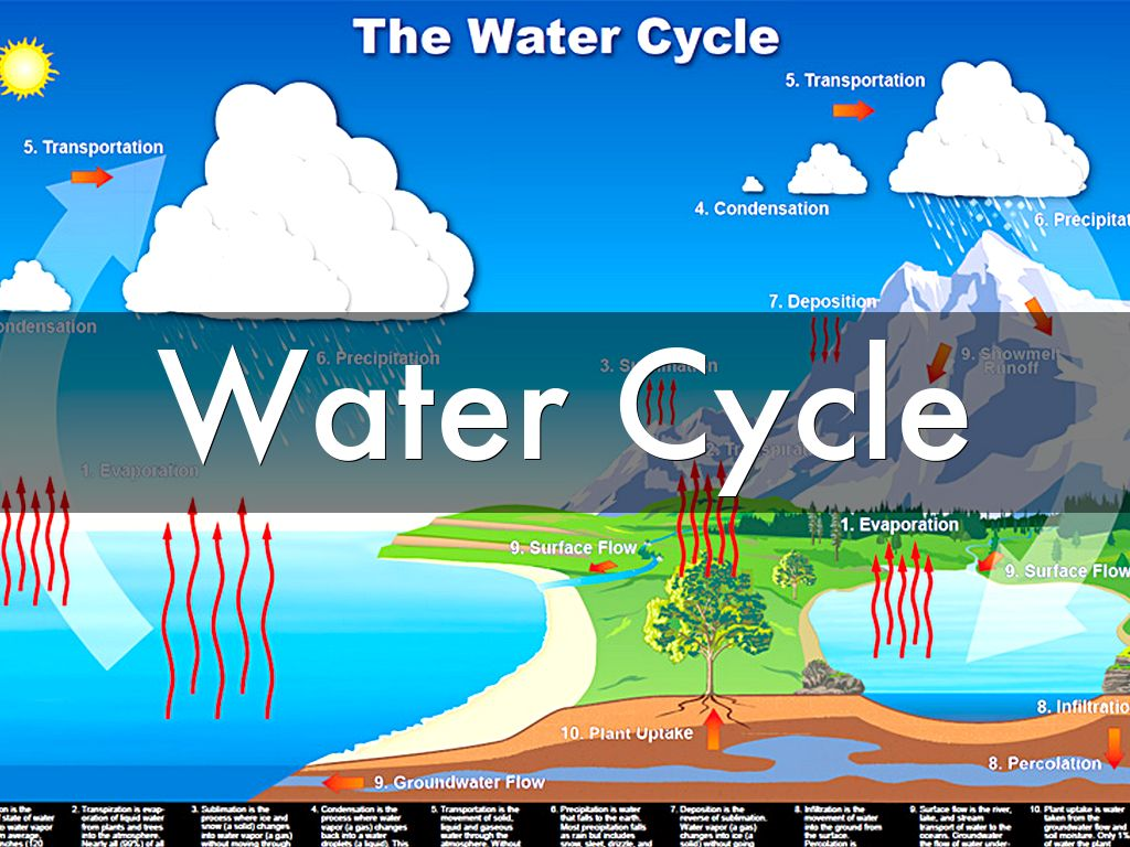 Water Cycle By Frank Garcia