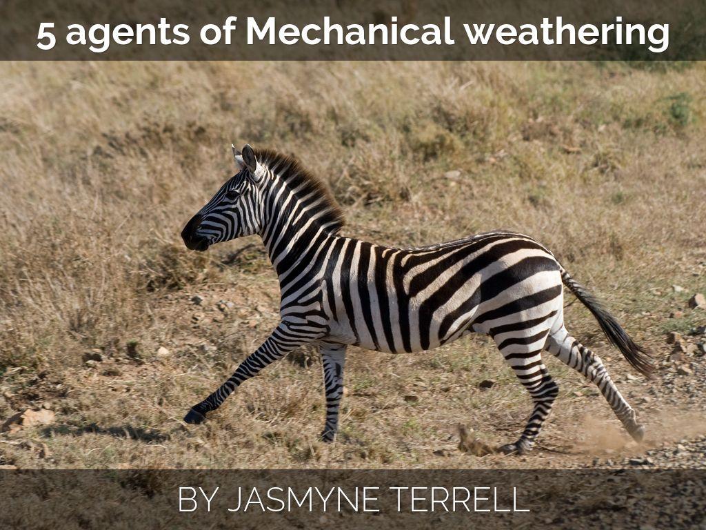 5 Agents Of Mechanical Weathering By Jasmyne Te21