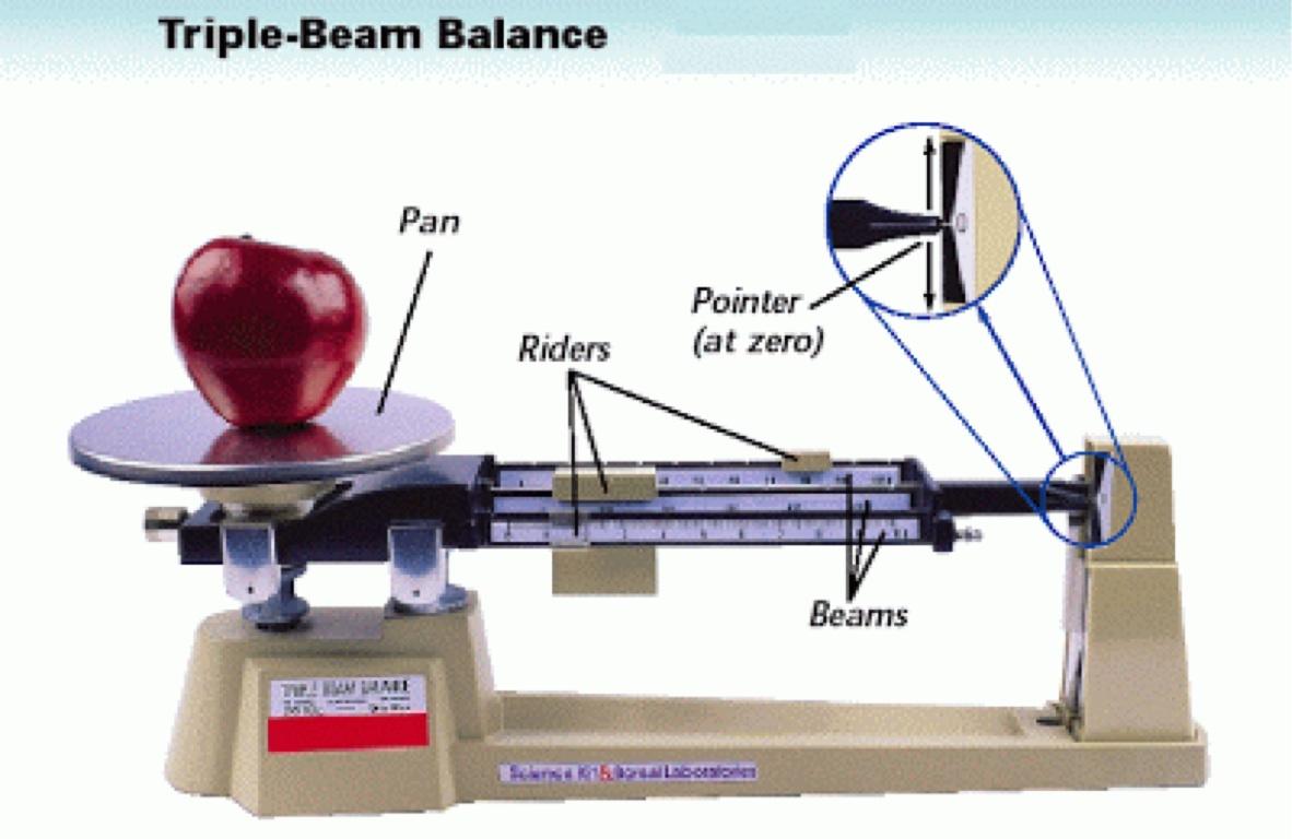 30 Triple Beam Balance Label