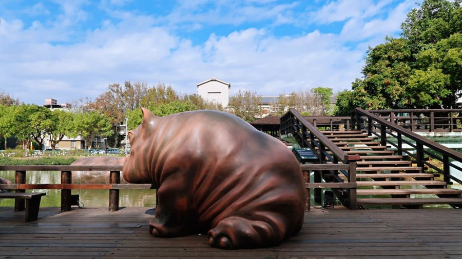 新竹旅遊景點/新竹市立動物園,全台最老的動物園重生強勢回歸,你朝聖了嗎?