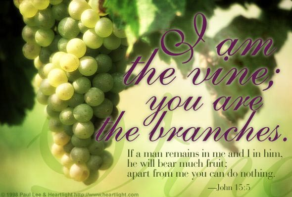 John 15:5 (45 kb)