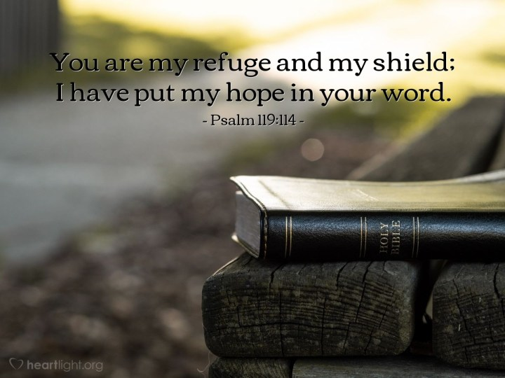 Illustration of Psalm 119:114 — You are my refuge and my shield; I have put my hope in your word.