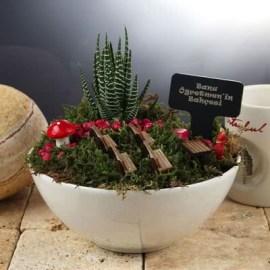 Öğretmen Sevgiliye Hediye Minyatür Bahçe