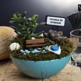 Erkek Arkadaşa Hediye Minyatür Bahçe