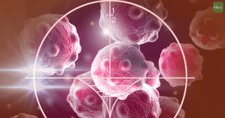 腫瘤_癌細胞_