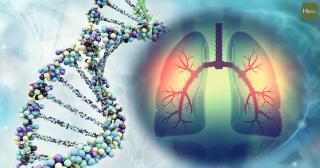 肺部_基因篩檢-01