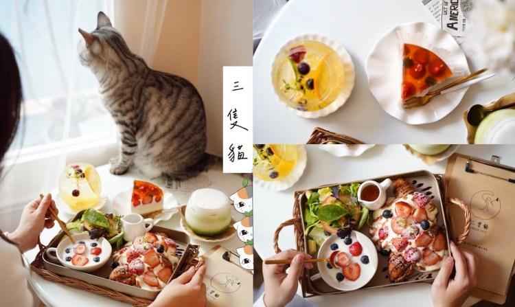【新竹美食】巷弄韓系咖啡廳『三隻貓2.0』有四隻療癒可愛的貓陪著你(新竹早午餐/新竹下午茶)