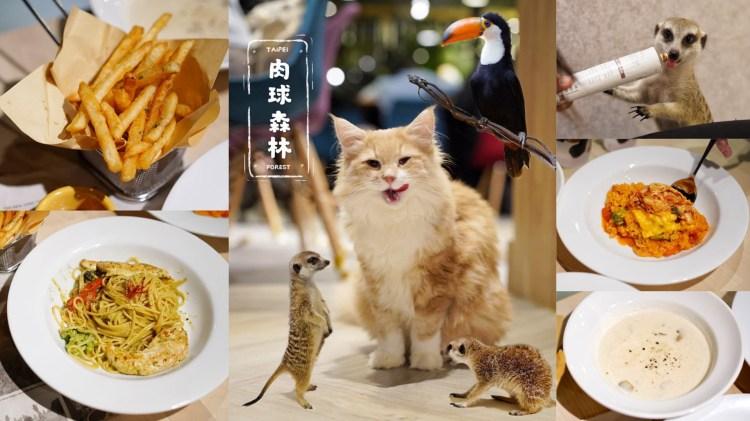 【台北美食】中正區新開幕『肉球森林』主題餐廳,療癒系狐獴、超逗趣大嘴鳥還有可愛貓咪們,低消200元!近捷運東門站