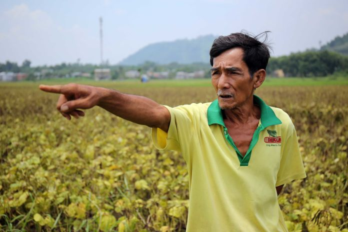 55 Years After Agent Orange Was Used In Vietnam, One Of Its Creators Is Thriving Here 55 Years After Agent Orange Was Used In Vietnam, One Of Its Creators Is Thriving Here 57aa36ce1700003400c72290