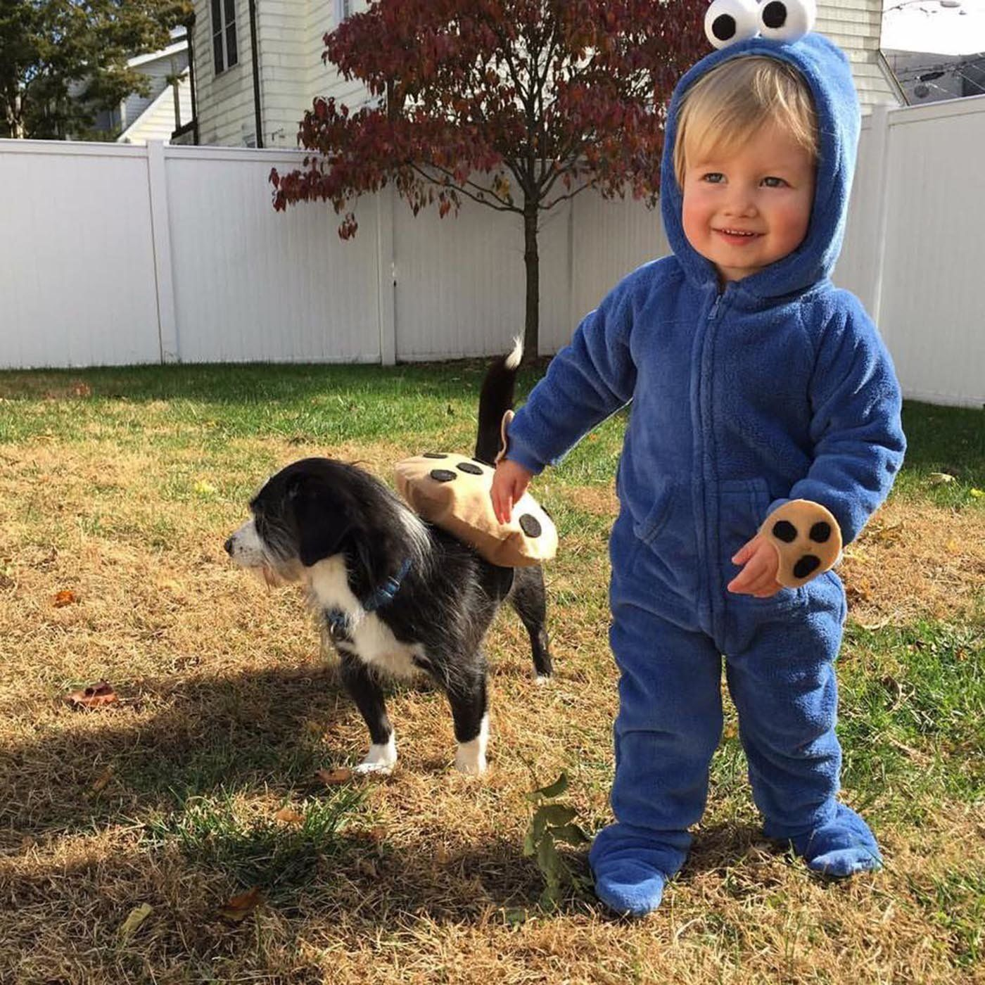 Every item on this page was chosen by a woman's day editor. 30 Perfect Halloween Costumes For Kid And Dog Bffs Huffpost Life