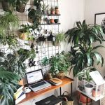 10 Creative Hacks To Add Plants To Your Small Space