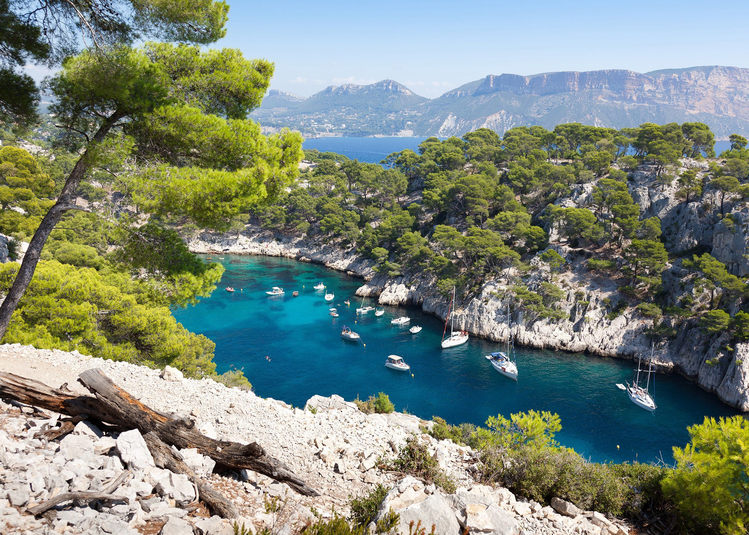 """Romantics will love the lavender fields and olive groves of <a href=""""https://www.lonelyplanet.com/france/provence/travel-tips"""