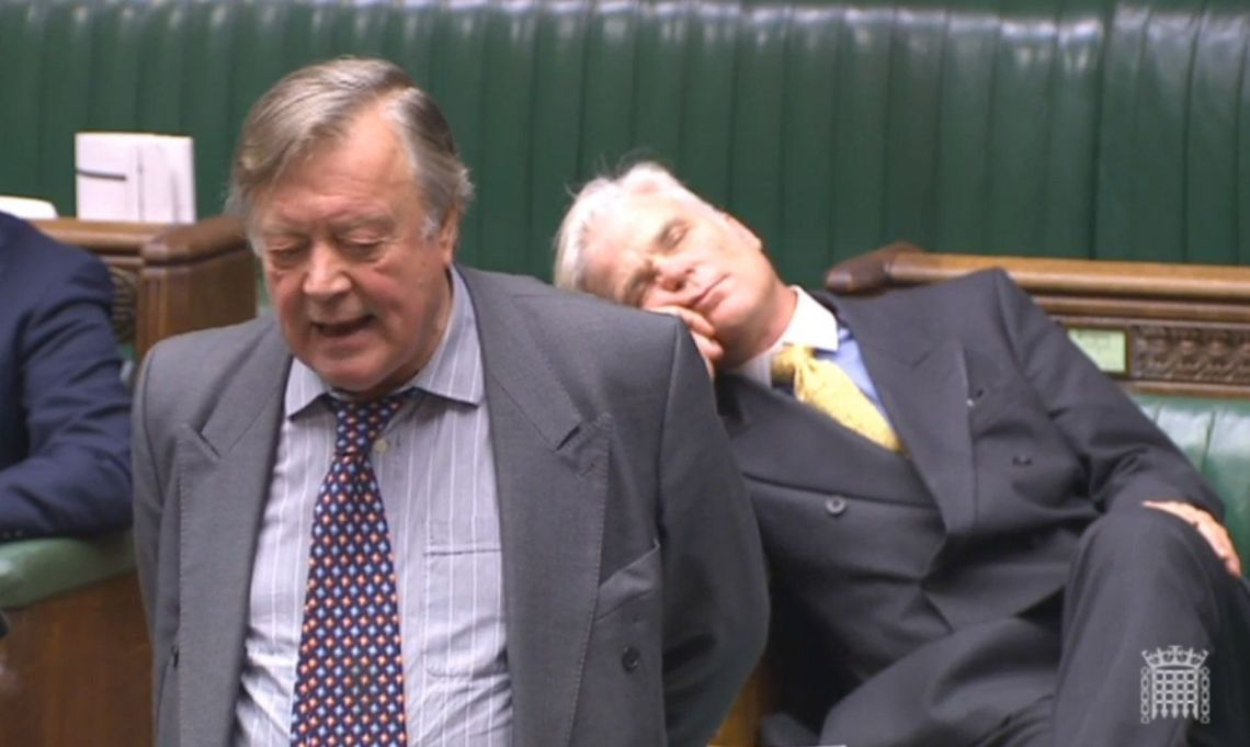 Sir Desmond Swayne MP appearing to sleep as he sits behind former Chancellor Ken Clarke during a House of Commons debate on Brexit