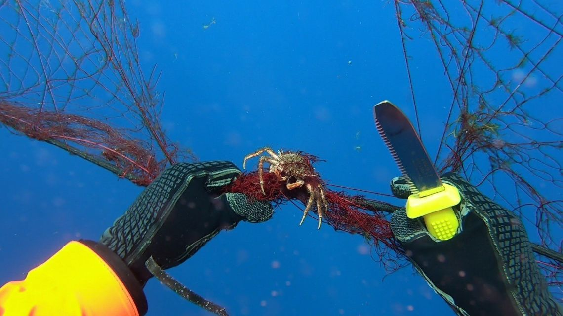 A diver works to free a crab caught in the ghost net recovered off the coast of the Aeolian Islands. Ghost nets are death tra
