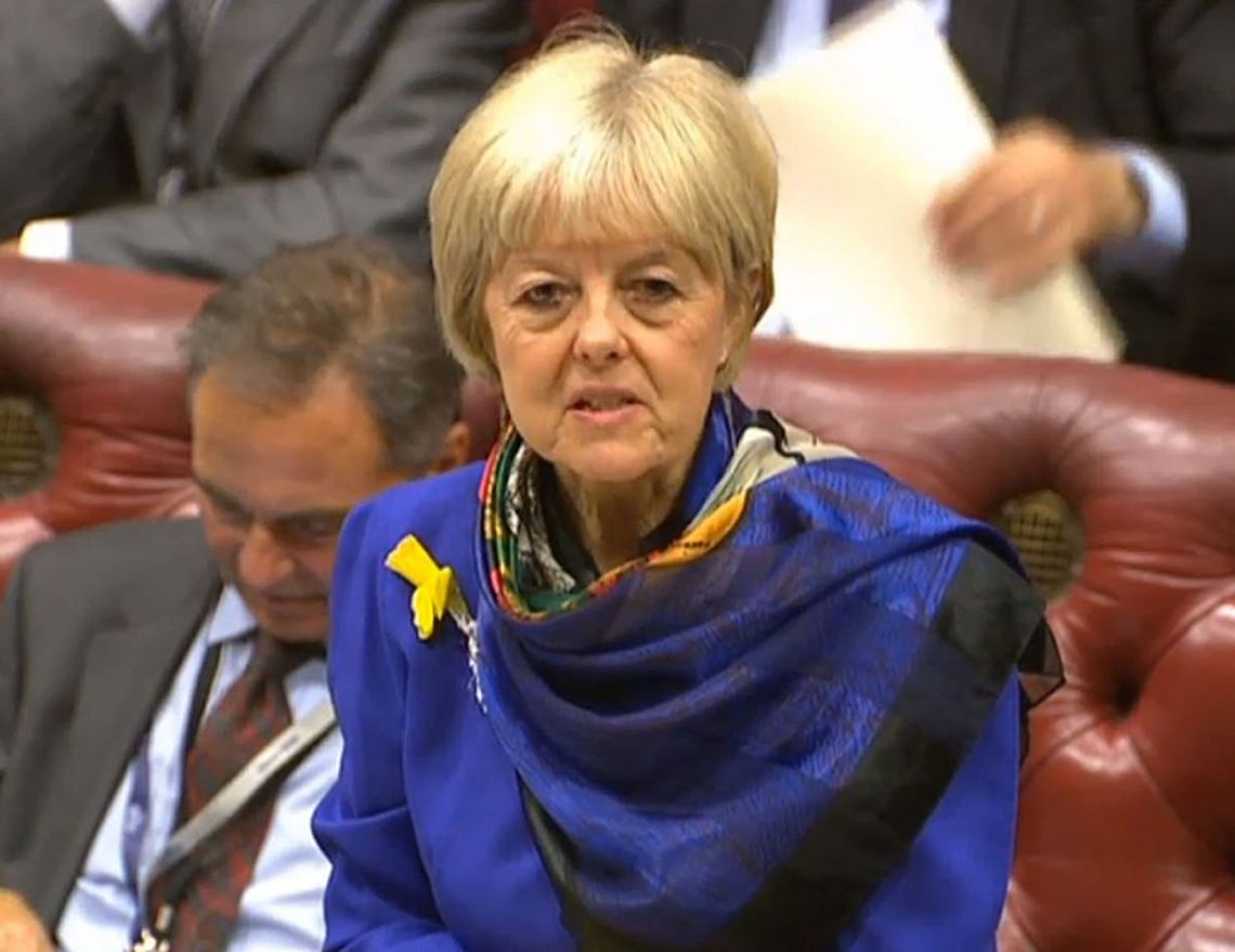Shadow Brexit minister Baroness Hayter