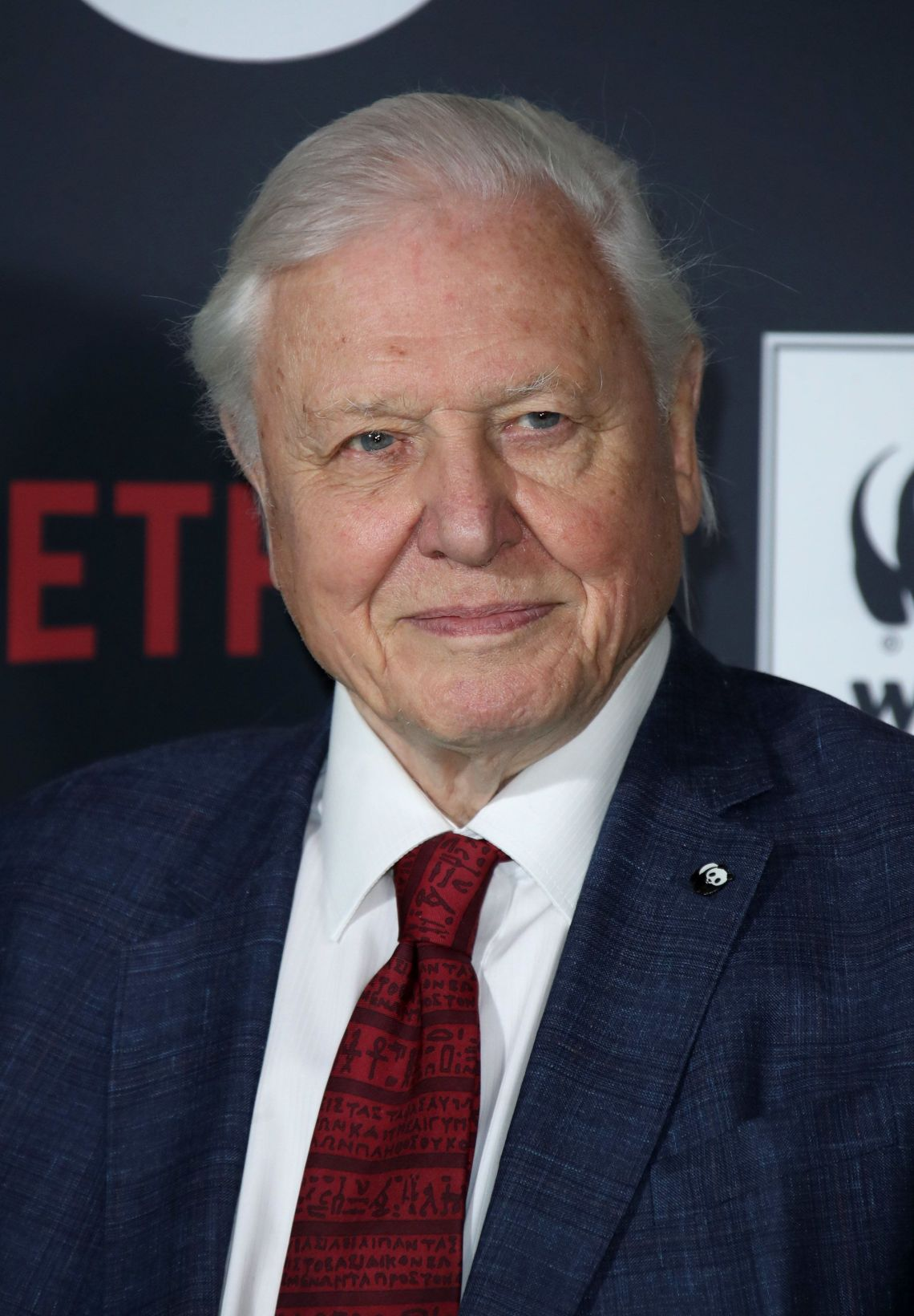 Sir David Attenborough is to narrate a new nature documentary for streaming giant Netflix.