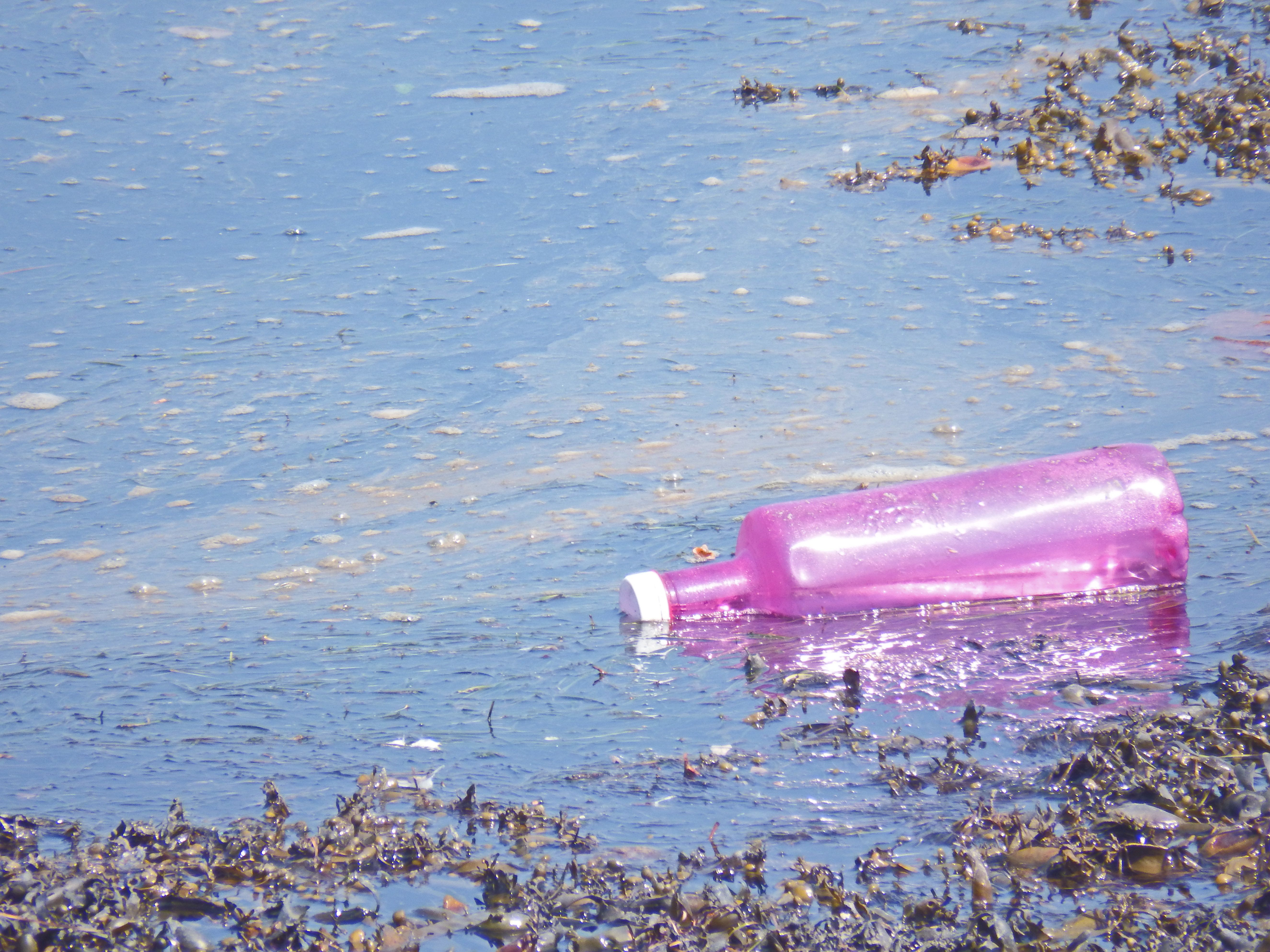 One analysis of 259 water bottles from 19 places in nine countries found an average of 325 plastic particles in every liter o
