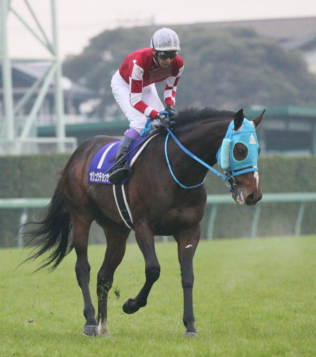 第63回有馬記念(GⅠ)。レースを終えた武豊騎乗のオジュウチョウサン=2018年12月23日、千葉・中山競馬場