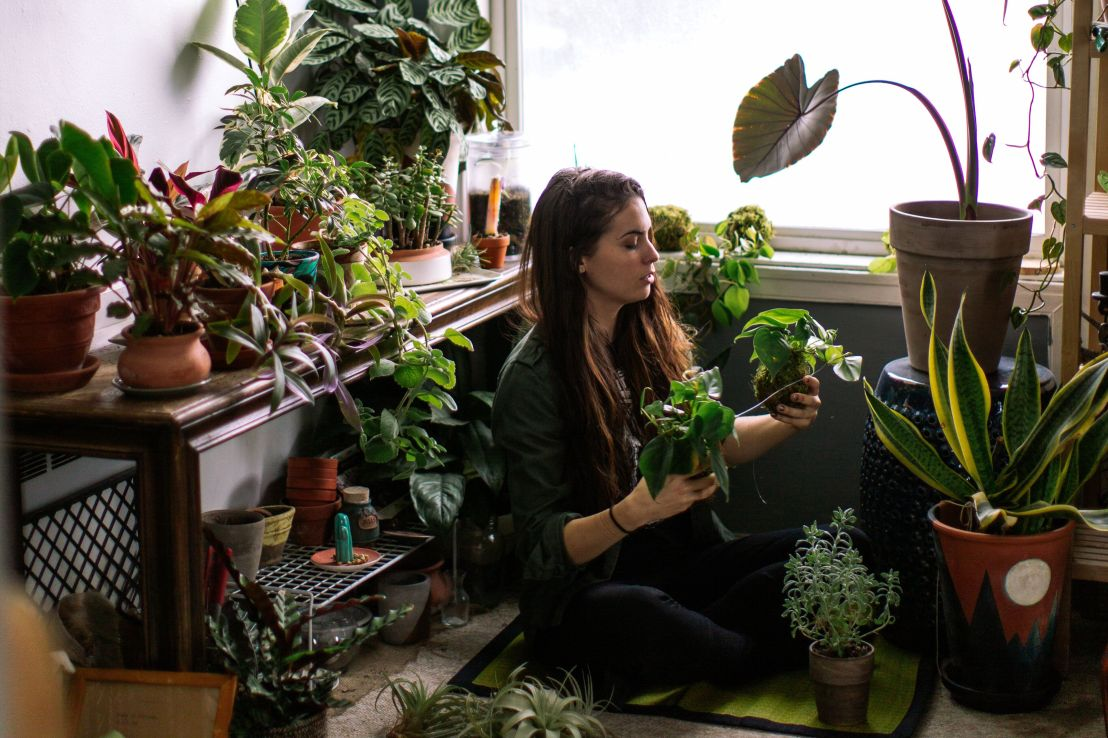 """""""There is something that is just completely awe-inspiring about having a living organism that you maybe get with one or two leaves ... and you give it a little bit of water, and it literally turns into something else in front of you,"""" one plant-lover said."""
