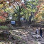 가을 다 가기 전에 가보자, 서울 속 숨은 단풍 명소 5곳