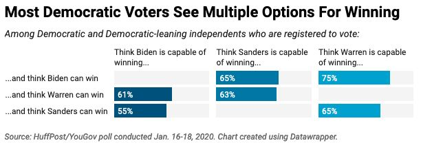 Most Democratic and Democratic-leaning voters think the party has multiple options for beating Trump this year.