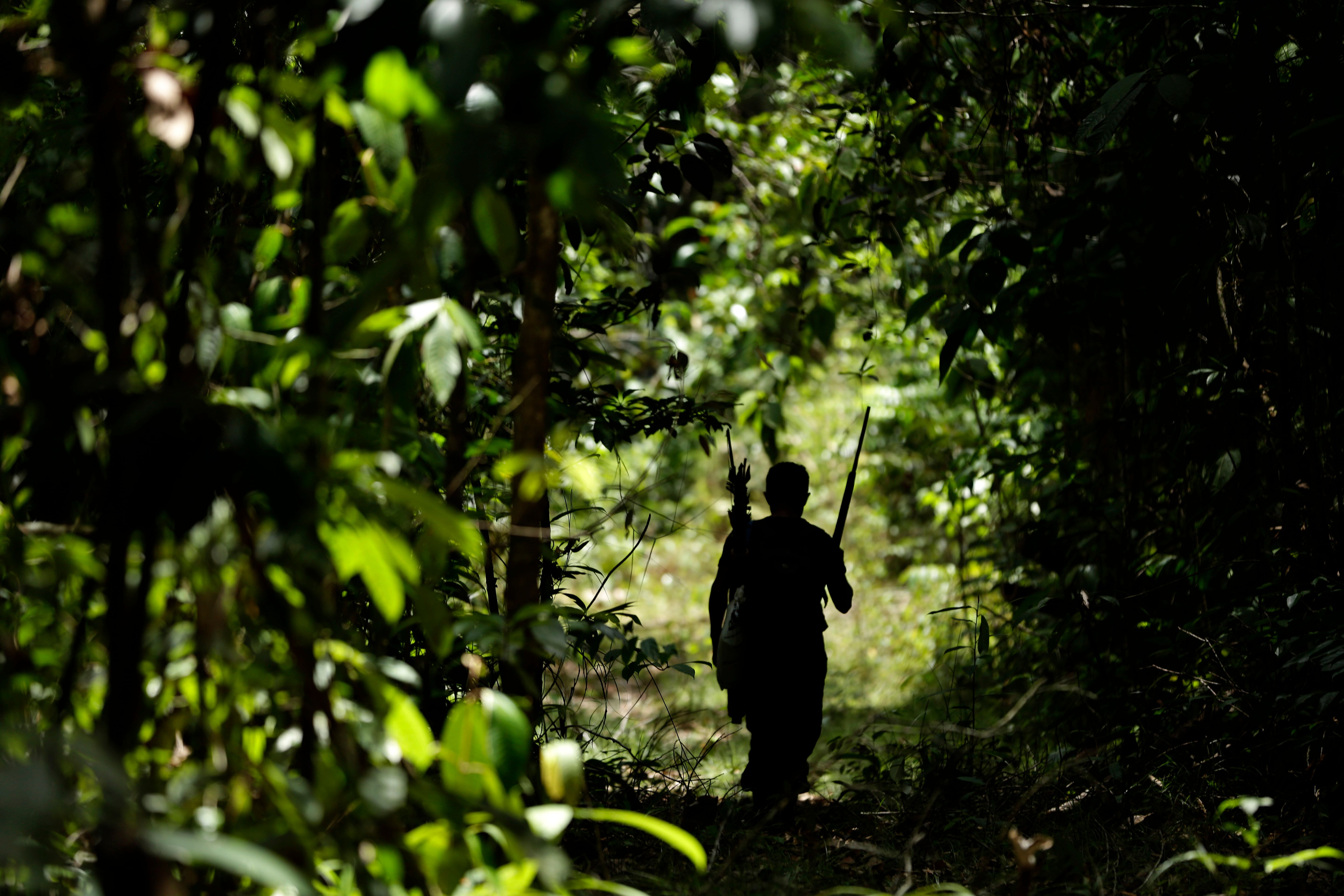 A Tenetehara Indigenous man patrols with the Ka'Azar, or Forest Owners, on the Alto Rio Guama reserve in Para state, ne