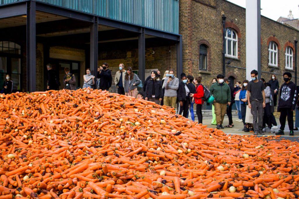 29 Tonnes Of Carrots Have Been Dumped At Goldsmiths College Campus