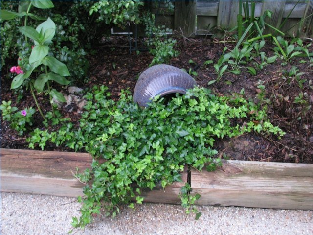 Low-Maintenance Landscaping Ideas for the Backyard | Hunker on Low Maintenance Backyard  id=43306