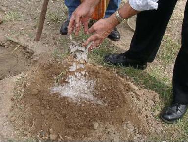Chuva sólida: pó criado por mexicano pode solucionar a seca