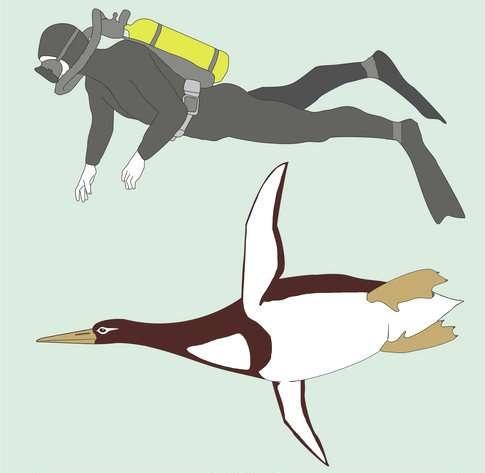 Pinguim gigante