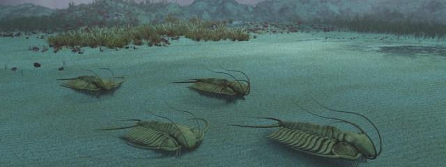 Imagem de: Evento de extinção em massa: estamos no 6º, conheça os anteriores